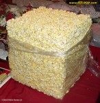 "10"" Solid FIT-POP popcorn cube"